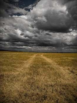 photo-path sky