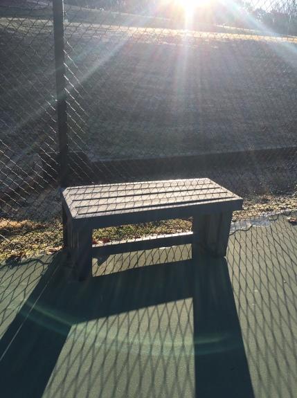 The Bench in morning light